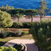 Grand Large: beautiful 2 rooms furnished with sea view