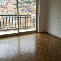 Spacious 2 rooms apt -  Millefiori
