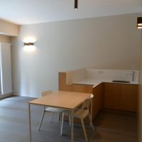 1 BEDROOM APARTMENT - Grande Bretagne - Renovated - Dual Use