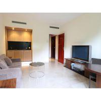 Large studio in luxury residence