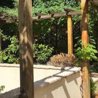 Co-exclusivity - Apartment with garden