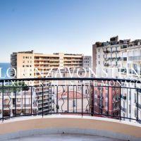 Bd d'Italie - Spacious rooftop apt.