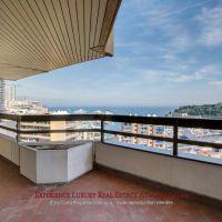 Surplombant le port de Monaco