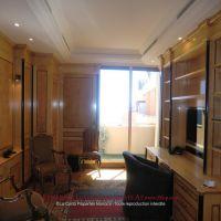 Monte-Carlo - Elegant furnished apartment