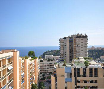 Superb Top Floor duplex apartment to rent