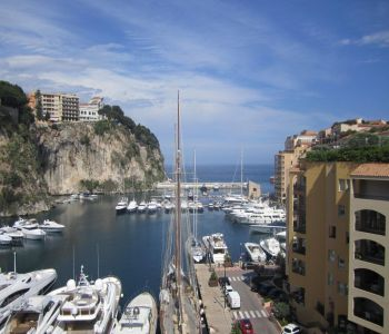 Sole Agent - Spacious studio furnished and renovated - Harbour View