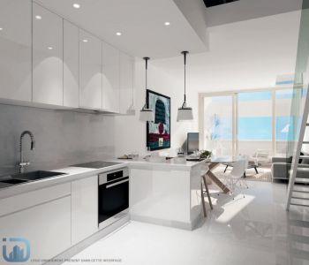 Superb duplex apartment
