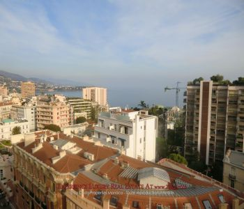 Central 1 bedroom apartment à Monte-Carlo