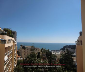 Monte-Carlo - Beautiful furnished master apartment