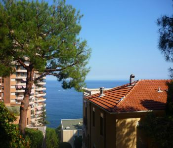 Lovely studio apartment - Sea view