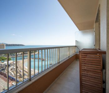 Spacious and renovated 1 bedroom flat - Sea View