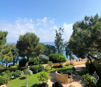 VERY NICE ONE BEDROOM APARTMENT IN FONTVIEILLE