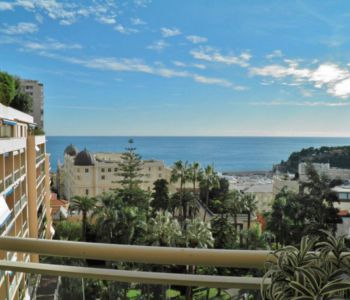 Luxurious furnished 2 bedrooms flat with sea view