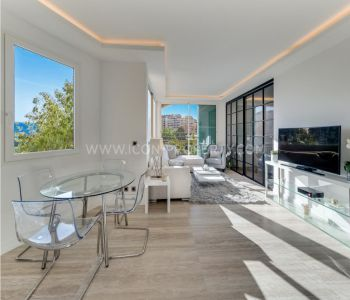 PENTHOUSE 1 BEDROOM APT IN  FONTVIEILLE - RENOVATED
