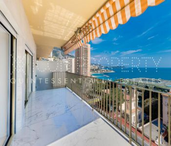Superb newly redone 2 bedroom apartment, sea view