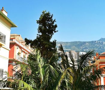 CONDAMINE, - 1/2 bedrooms flat ideal for Legal/Medical Profession